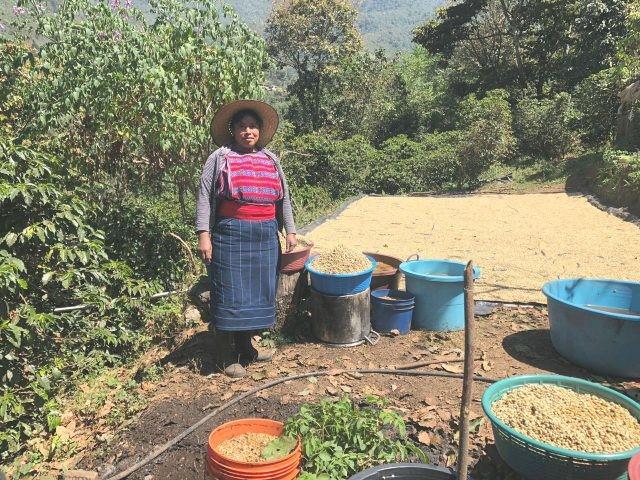 Guatemala via John1