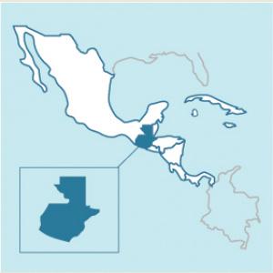 Guatemala Organic