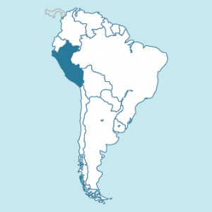 Peru FTO