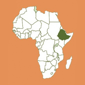 Ethiopia Decaf Natural Unroasted