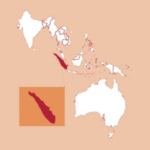 Sumatra Decaf FTO
